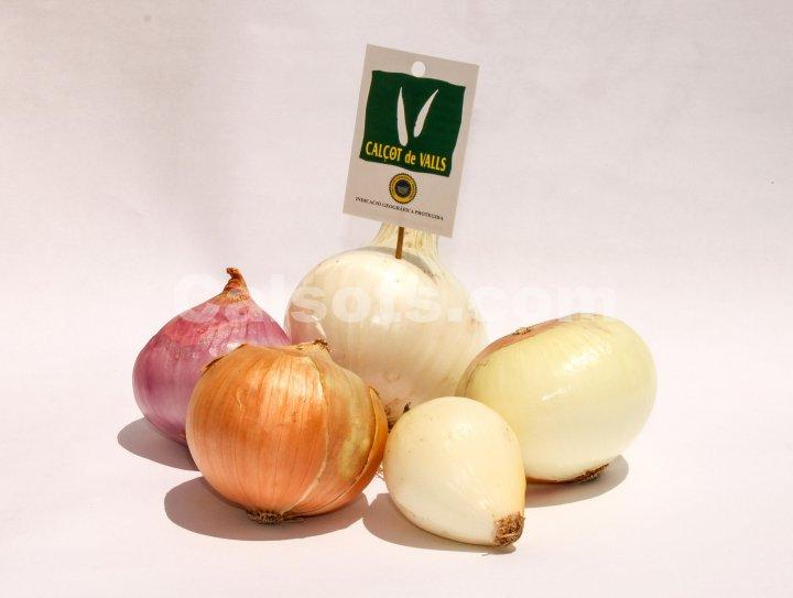 Diferentes tipos de cebolla