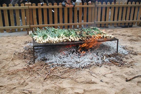 Demostración de asar calçots en la Fiesta de la Calçotada de Valls