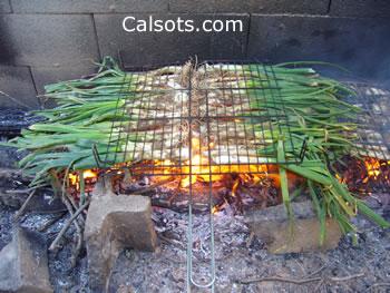 Calçots en el fuego, sobre llama de sarmientos