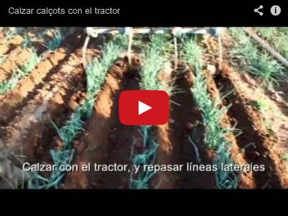 Vídeo de Calçar calçots amb tractor